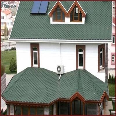 Shingle çatı ustası